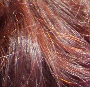 Henna hair closeup