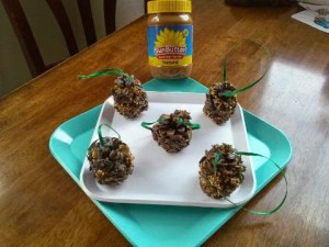 Sunbutter bird feeders